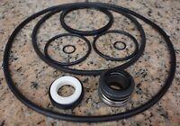 Pentair SuperFlo Swimming Pool Pump Kit Seal Gasket O-rings Rebuild [Kit28]