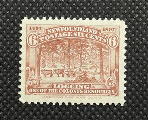 Newfoundland 1897 6c Logging Stamp #44 MNH Canada