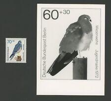 BERLIN FOTO-ESSAY 442/445 GREIFVÖGEL 1973 WIESENWEIHE BIRD OF PREY PROOF !! e701