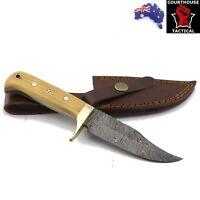 Handmade Hunting Knife, Damascus Blade Walnut Wood & Brass Handle Leather Sheath