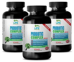 digestive health - PROBIOTIC COMPLEX 500mg - bifidobacterium blend 3B