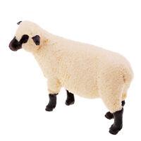Animal Figure 14 Pcs Wild Animal Toy Big Shropshire Sheep Plastic Statue Toy