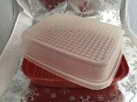 ❤️Vintage Tupperware Marinade Meat Tenderizer Keeper Container Paprika 1518