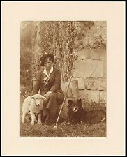 BORDER COLLIE SHEEPDOG LOVELY DOG LADY AND LAMB PRINT READY MOUNTED