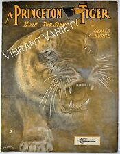 A Princeton Tiger Princeton University College Art By Starmer 1902 sheet music