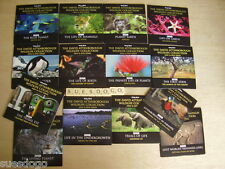 ATTENBOROUGH WILDLIFE COLLECTION - COMPLETE SERIES 2 ON 14 PROMO DVDS UNPLAYED