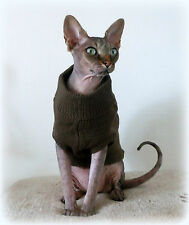 brown Winter sweater coat top for a Sphynx cat - cat clothes Katzenbekleidung