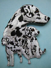IRON-ON EMBROIDERED PATCH - DALMATIAN - DOG