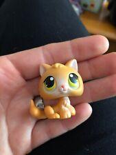 Authentic Littlest Pet Shop #86 Orange Kitten Cat With Yellow Orange Eyes~