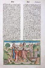 9. DEUTSCHE BIBEL BIBLIA GERMANICA INKUNABEL TOD AARON 4.BUCH MOSE KOBERGER 1483