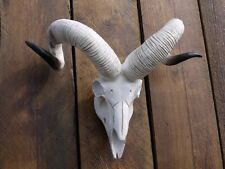 ANIMAL SKULL RAMS SKULL WALL MOUNTED RESIN SKULL HEAD STAG GOAT HEAD