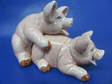 Pig Salt and Pepper Pots - Pig Cruet Set - New