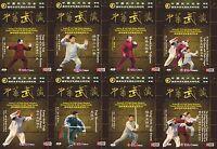 Yang Style Taijiquan -  Tai Chi Quan Essence Series by Fu Shengyuan 20DVDs