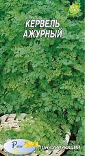 Graines de Cerfeuil commun   - Plantes Herbes - 500 graines