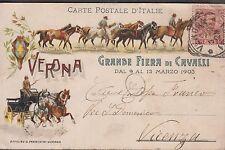 Pubblicitaria - Grande Fiera di Cavalli, Marzo 1903, Verona, viaggiata.