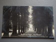 R&L Postcard: The Hermitage, Old Windsor, Berkshire, 1910
