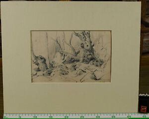 Zuschreibung Adolf Johann Hoeffler 1825-1898 Drawing Antique Forest At Glion