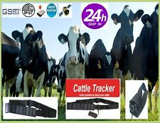 Free Gift! Cattle Solar Tracker 5000 3G Animal Camel Cow Collar Gps Free Ios App