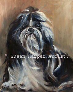 SALE Shih Tzu Signed Dog Print by Susan Harper Unmounted