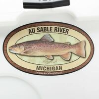 Au Sable River Brown Trout Sticker Fly Fishing Decal GUARANTEED 3 years no fade