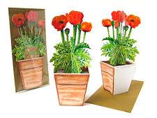 Pop-Up-3 D-carte Pavot: un Pot de fleurs avec rouge pavot + Enveloppe