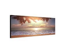 150x50cm Wandbild Panorama tropischer Strand Palme Küste Meer Sinus Art Leinwand