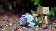 """Danbo with the Garden Flowers"" Color Photo Print"