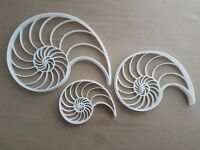 Fibonacci Shell Growth Shape Cookie Cutter Dough Biscuit Pastry Fondant Stamp