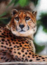 Original Aceo Painting Cheetah Cat Wildlife Miniature Art by Christina Schulte