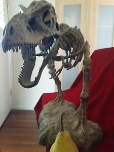 Huge Tyrannosaurus Rex Model Statue Replica Prop Dinosaur almost 1m long