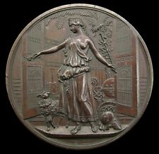More details for 1884 crystal palace electrical exhibition 63mm bronze medal