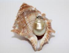 Australian Golden South Sea Pearl 12x16mm Pendant 14kt White Gold Bail Enhancer