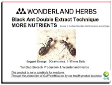 1 KG BLK Mountain ANT polyrhachis vicina Double Extract Powder, More Nutrients