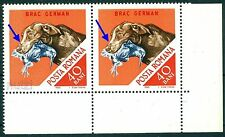 1965 Hunting Dog,German Shorthaired Pointer,Jagdhund,Romania,MNH variety ERROR
