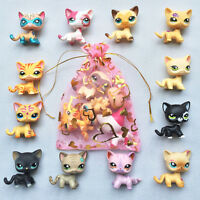 5pcs lot Random LPS Short Hair Cat Littlest Pet Shop rare kitty Surprise gift