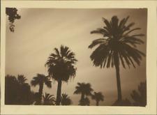 Vision du Désert au Clair de Lune  Vintage silver print.  Tirage argentique d&