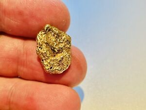7.82g Australian Natural Gold Nugget - Personally Prospected