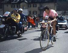 FRANCESCO MOSER GIRO D'ITALIA 1984 CHAMPION POSTER TEAM GIS