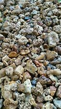 10lbs Creek Rock River Stones for Garden landscaping Terrariums Aquarium quartz