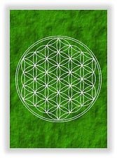 La flor de la vida nº 26-Flower of Life vida flor chakra imagen nuevo en verde