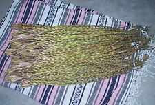"3   18""- 24"" Braids SWEET GRASS (for smudging), Native picked in Saskatchewan!"