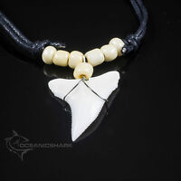 Bull shark tooth serrated necklace pearl white beaded cord necklace fishing c228