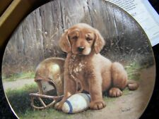 Wide Retriever From Good Sports Plate Collection By Jim Lamb