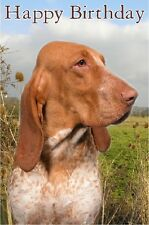 Bracco Italiano Dog Design A6 Textured Birthday Card BDBRACCO by paws2print