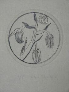 Toscanische Pflanzen - Otto Rohse - Kupferstich signiert - Ex. 4/5 Botanik 1987