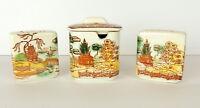 Vintage Painted Salt Pepper Sugar Bowl Set Made In Japan MCM 4 Pieces Pottery