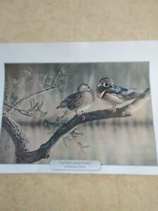 """Richard Clifton """"Soul Mates Spring Woodies"""" print Great Condition"""