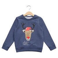 Boy's Xmas Jumper Ex Highstreet Rudolph Christmas Sweater