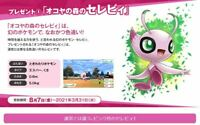 Pokemon Serial code Shiny Celebi and Okoya Forest Region free From JAPAN