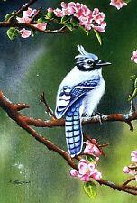 """Blue Jay Blossoms"" Bird Porch Full Size Flag"